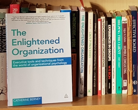 Why I wrote The Enlightened Organization